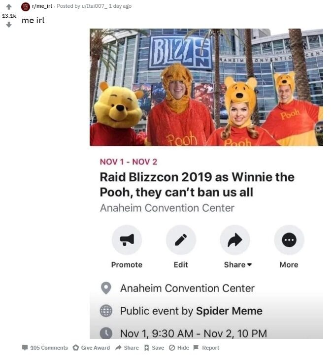 winnie-the-pooh-costume-raid-reddit-2